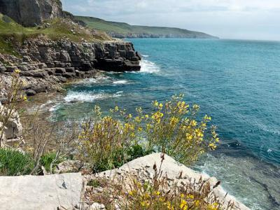 The cliffs at Winspit near Worth Matravers on the Dorset Coast.